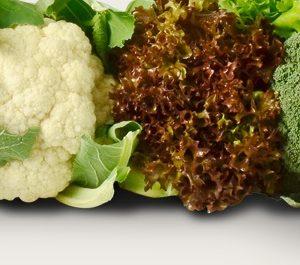 Legumes / Vegetables